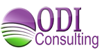 Website Design and Hosting by ODI Consulting
